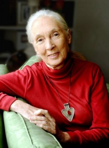 Jane-Goodall-221x300.jpg